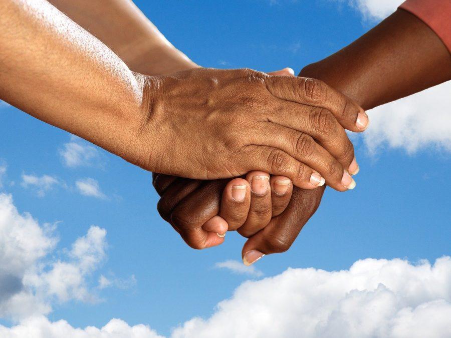 la journée internationale de la solidarité humaine